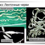 Достопримечательности Мостар в Боснии 5